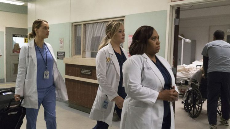 Grey's Anatomy - 13x10 - You Can Look (But You'd Better Not Touch)