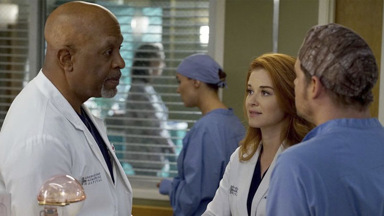 Grey's Anatomy – 13×14 – Back Where You Belong | Séries da TV
