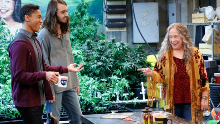 Disjointed-01x01
