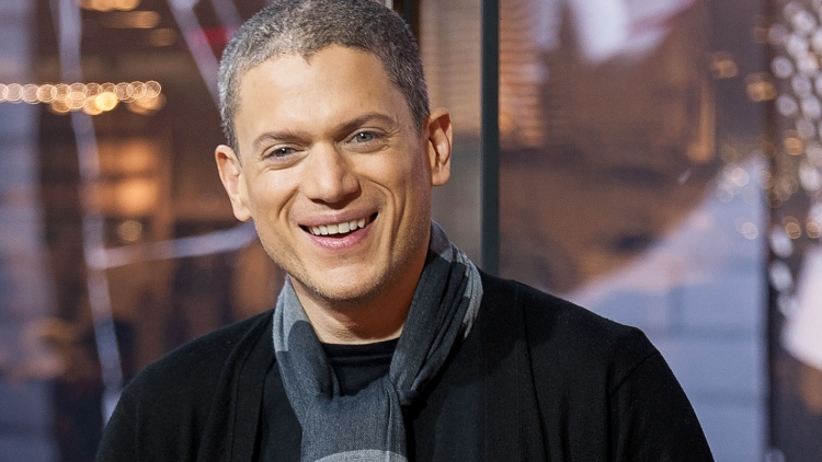 wentworth miller law and order