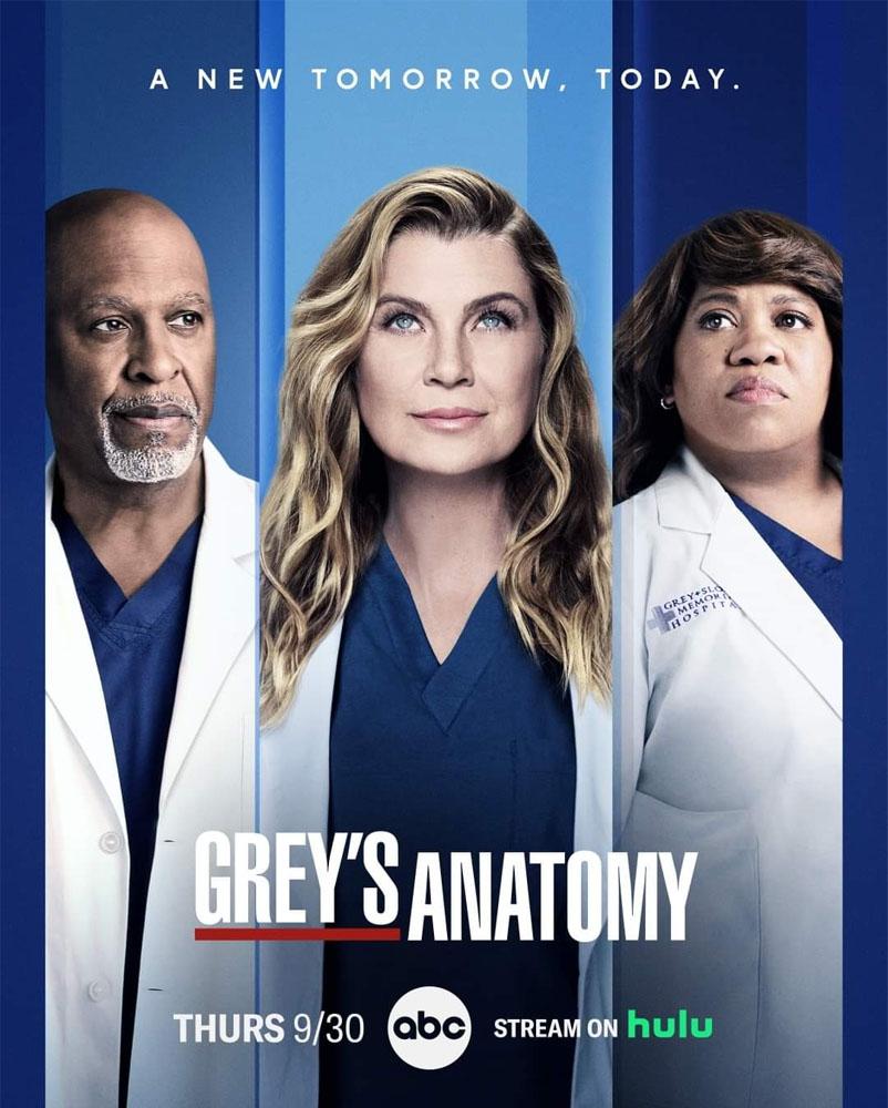 greys anatomy posters